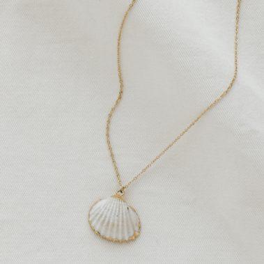 c Ollier coquillage blanc doré